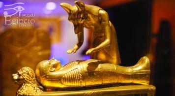 Museu Egípcio (7)